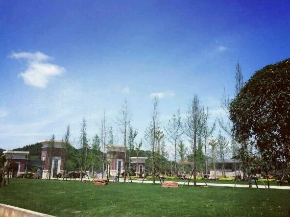 校园环境10