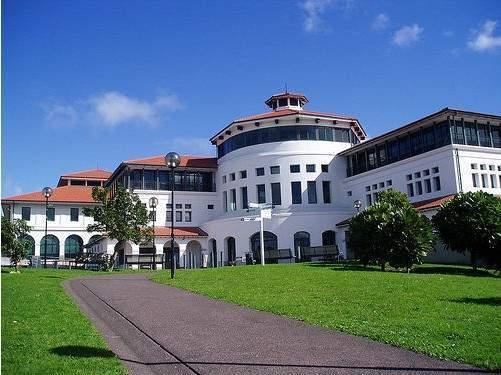 奥克兰大学教育与社会工作学院
