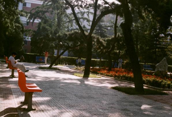 校园环境 (10)