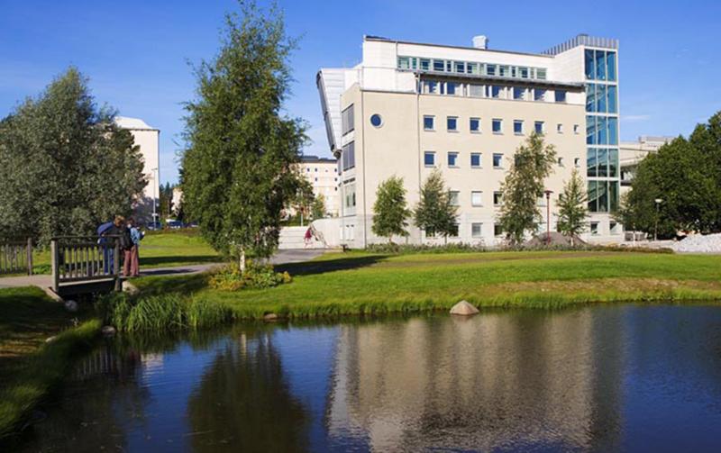萨里大学院系设置