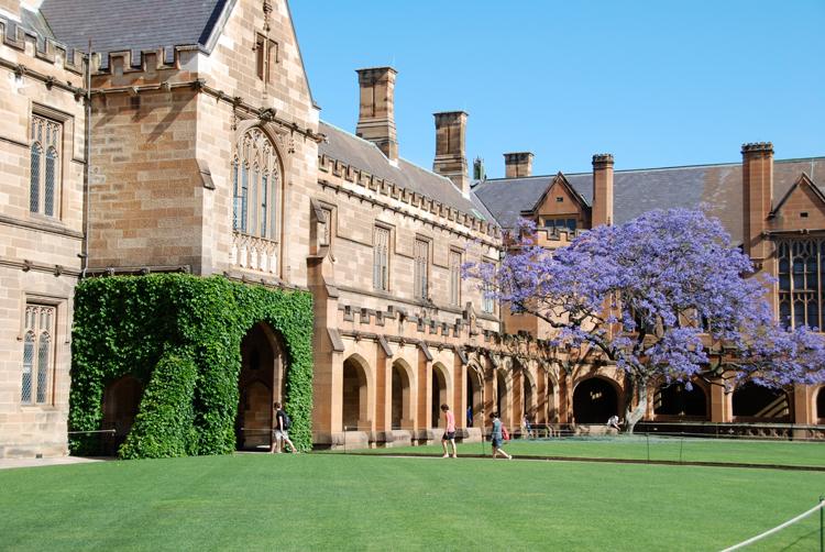悉尼大学本科专业及学制