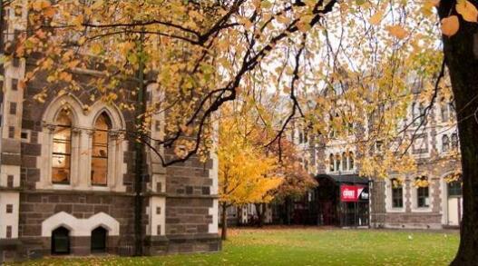 林肯大学预科课程有哪些