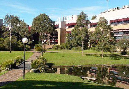 澳洲 卧龙岗大学 图片11