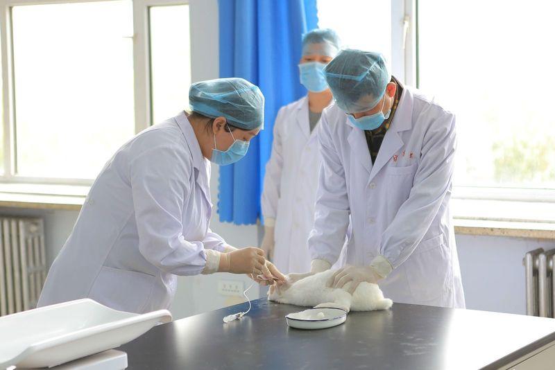 (黑龙江护理高等专科学校)校园环境