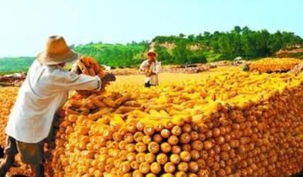 农业商学专业