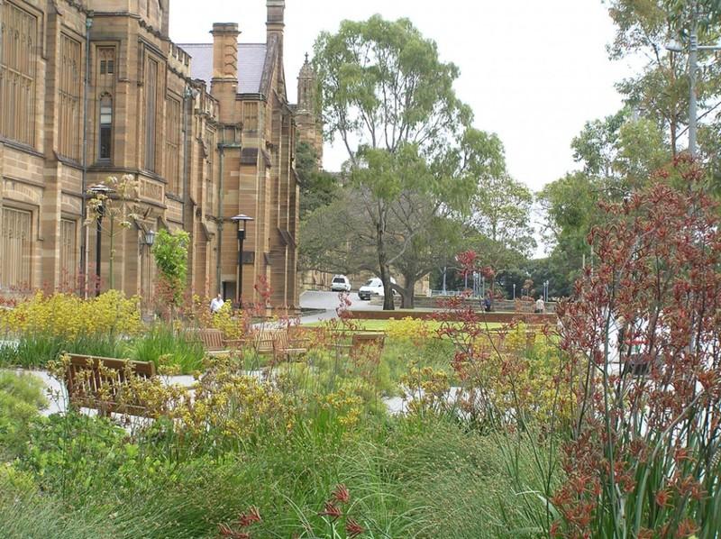 澳洲  悉尼大学 建筑 (135)
