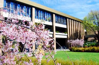 澳洲 拉筹伯大学图片3