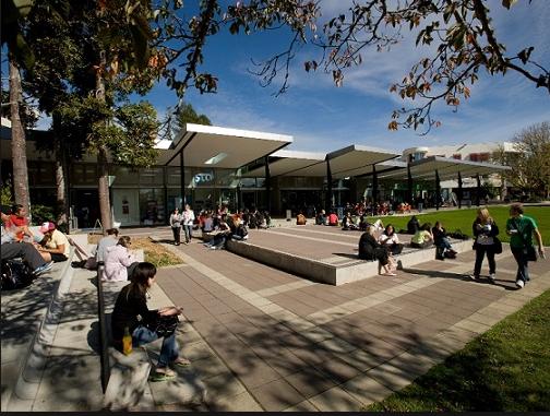 怀卡托大学