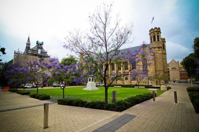 阿德莱德大学预科在哪个城市?
