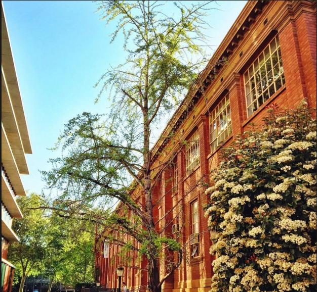 澳洲留学:阿德莱德大学预科学费及入学要求解析