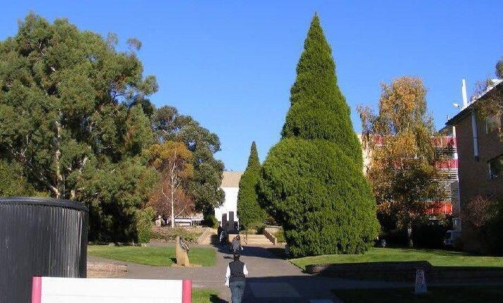 澳洲留学:塔斯马尼亚大学留学省钱技巧
