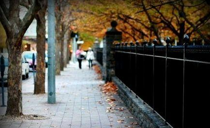 澳洲 堪培拉大学 图片17