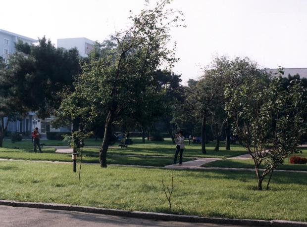 校园环境 (14)