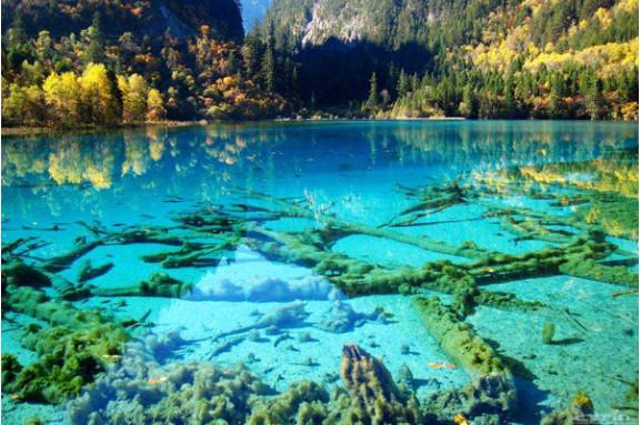 新西兰环境科学专业