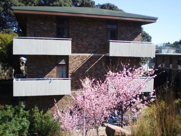 澳洲 新南威尔士大学图片2