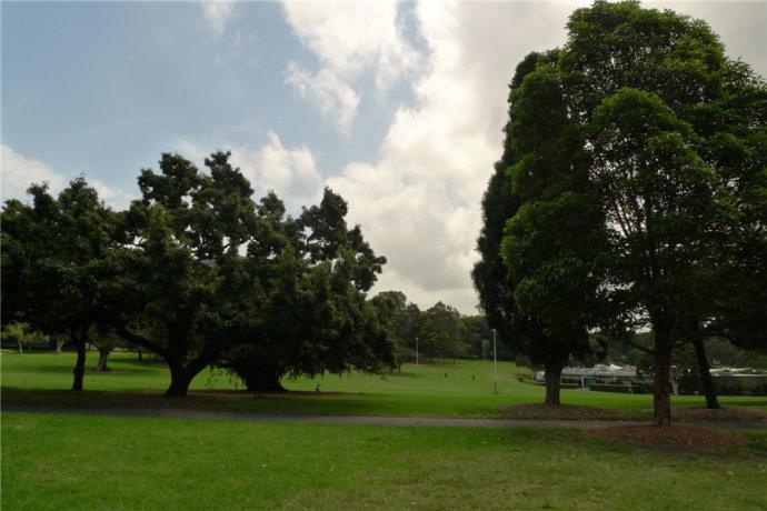澳洲 悉尼大学 图片33