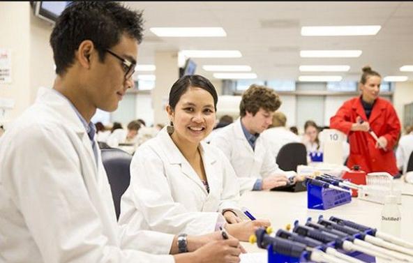 新西兰健康科学专业就读优势