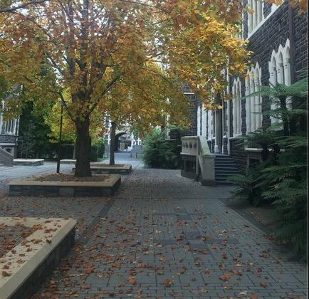 奥塔哥大学自然科学院