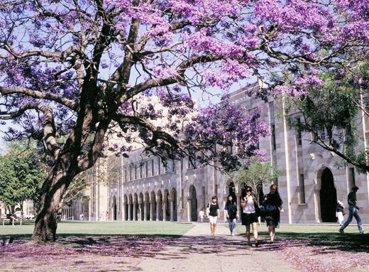 澳大利亚昆士兰大学研究生