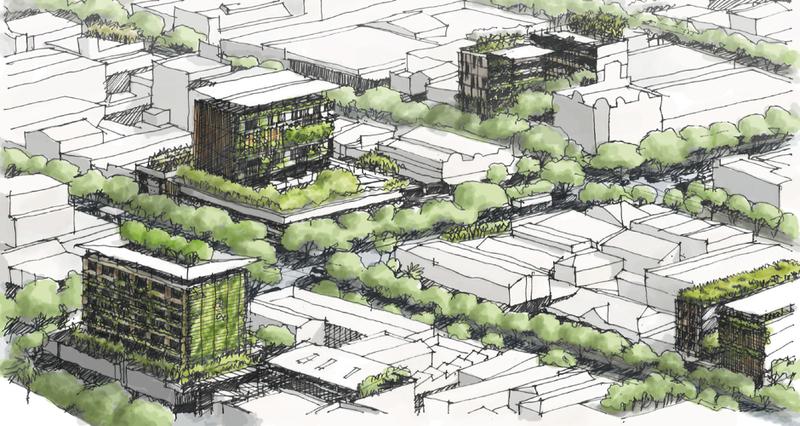 奥克兰大学城市规划专业