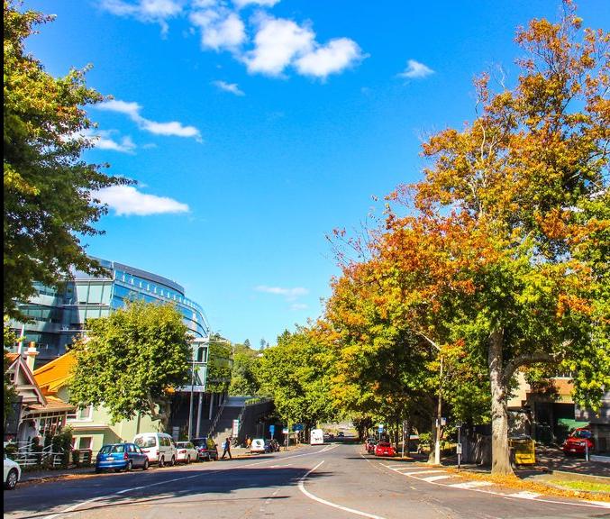 新西兰奥克兰大学自然科学学院