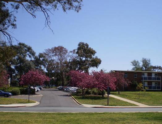 澳洲国立大学可以用高考成绩申请吗