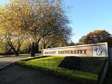 梅西大学健康学院