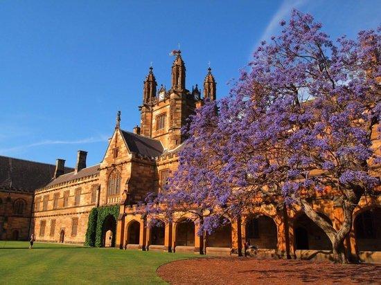 澳洲  悉尼大学 建筑 (129)