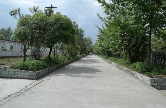 亳州中药科技学校校园环境