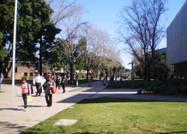 新南威尔士大学预科在哪个城市?